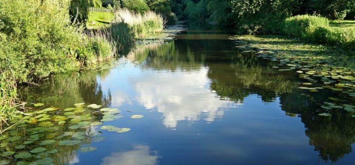 Lacul de Constiinta si Sabotorii Tacuti